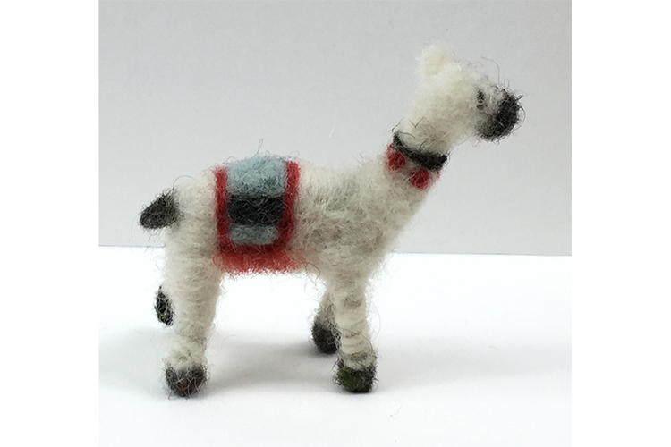 llama_side2